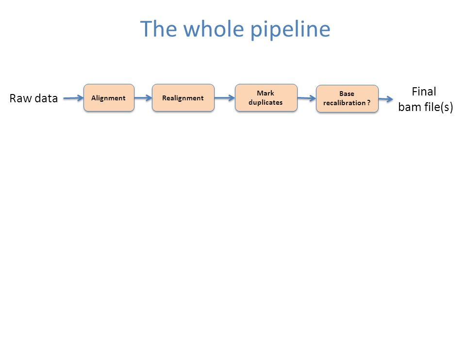 The whole pipeline Alignment Realignment Mark duplicates Raw data Base recalibration .