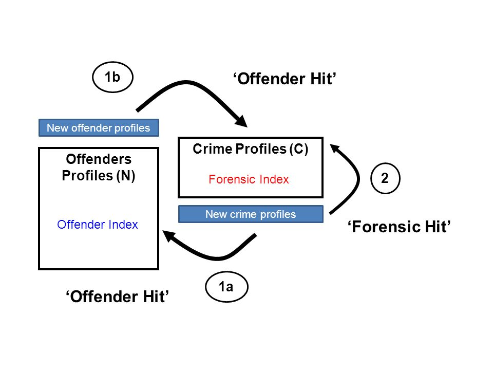 Primary Searches Conducted Offender Index Offenders Profiles (N) Crime Profiles (C) Forensic Index 1a 'Offender Hit' 'Forensic Hit' New offender profi