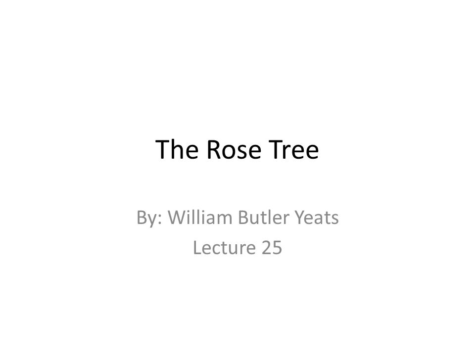 The Rose Tree By: William Butler Yeats Lecture 25