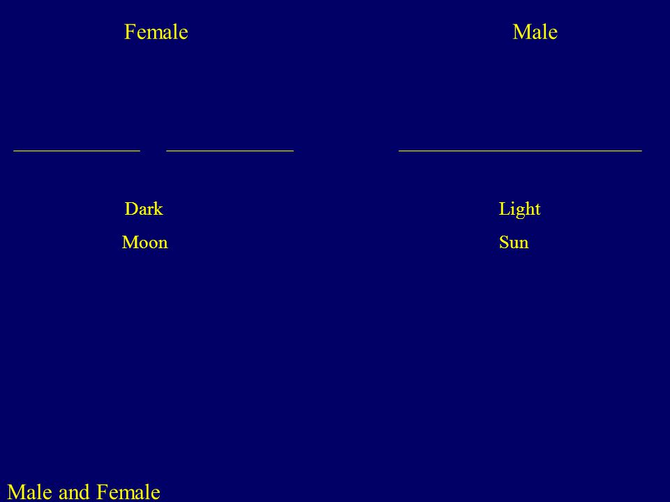 Male and Female Male Female Dark Light Moon Sun