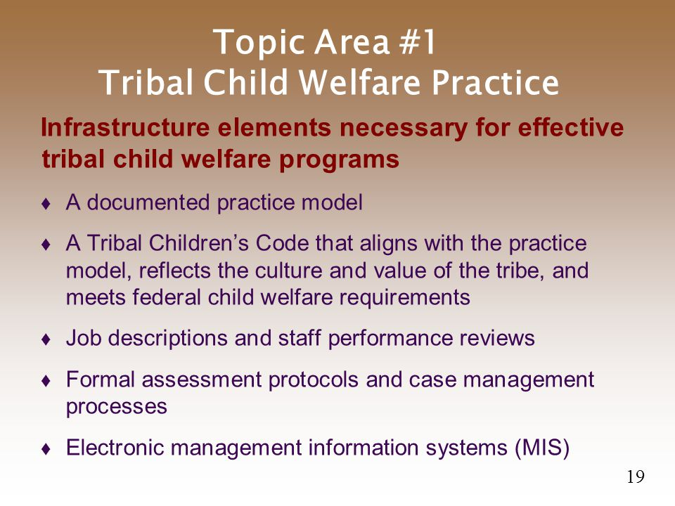 Topic Area #1 Tribal Child Welfare Practice Infrastructure elements necessary for effective tribal child welfare programs  A documented practice model  A Tribal Children's Code that aligns with the practice model, reflects the culture and value of the tribe, and meets federal child welfare requirements  Job descriptions and staff performance reviews  Formal assessment protocols and case management processes  Electronic management information systems (MIS) 19