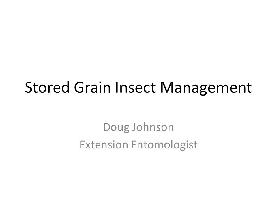 Stored Grain Insect Management Doug Johnson Extension Entomologist