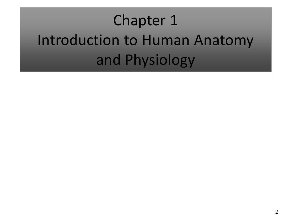 2 Chapter 1 Introduction to Human Anatomy and Physiology