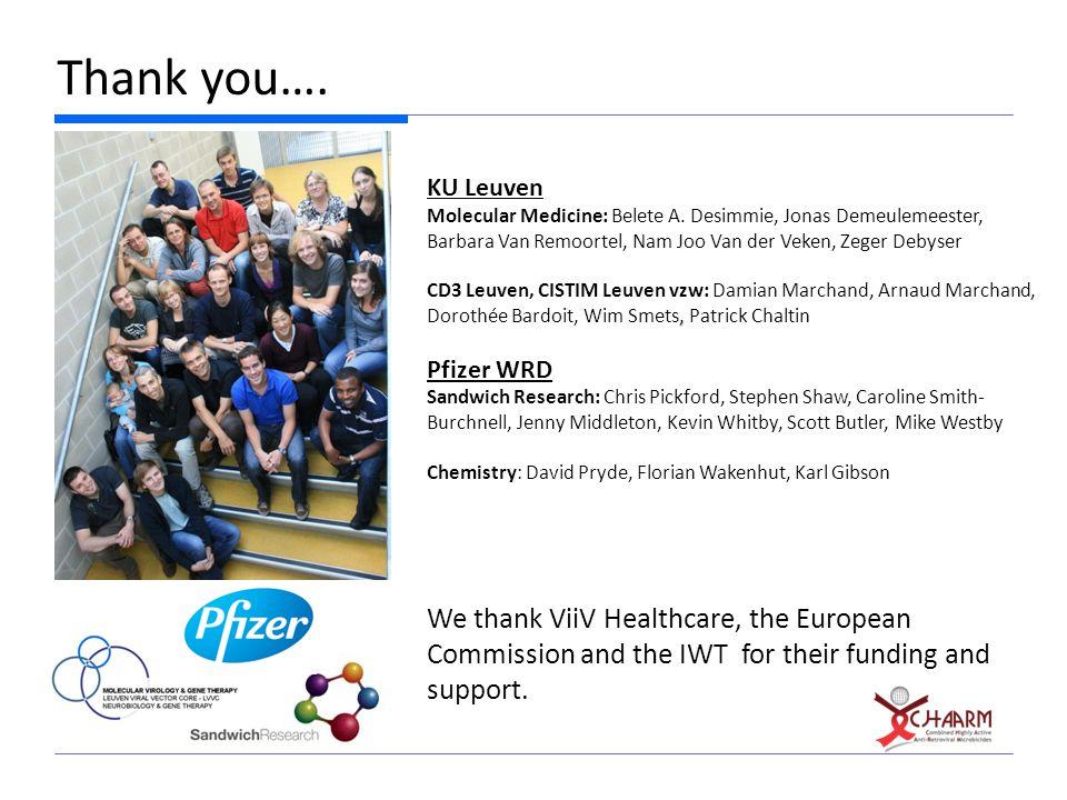 Thank you…. KU Leuven Molecular Medicine: Belete A.