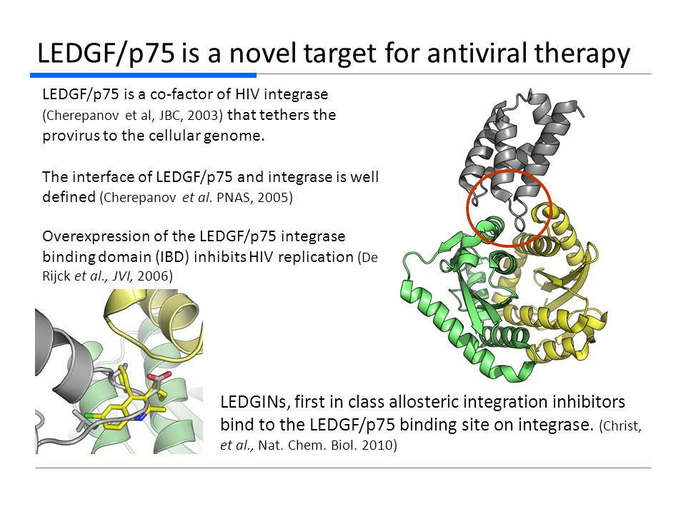LEDGINs, first-in-class antivirals 1.84 Å co-crystal structure LEDGINs are a novel class of HIV-replication inhibitors designed on the basis of a pharmacophore model.