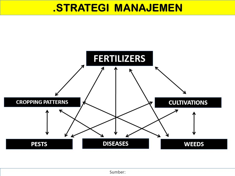 .STRATEGI MANAJEMEN Sumber: FERTILIZERS CROPPING PATTERNS CULTIVATIONS PESTS DISEASES WEEDS
