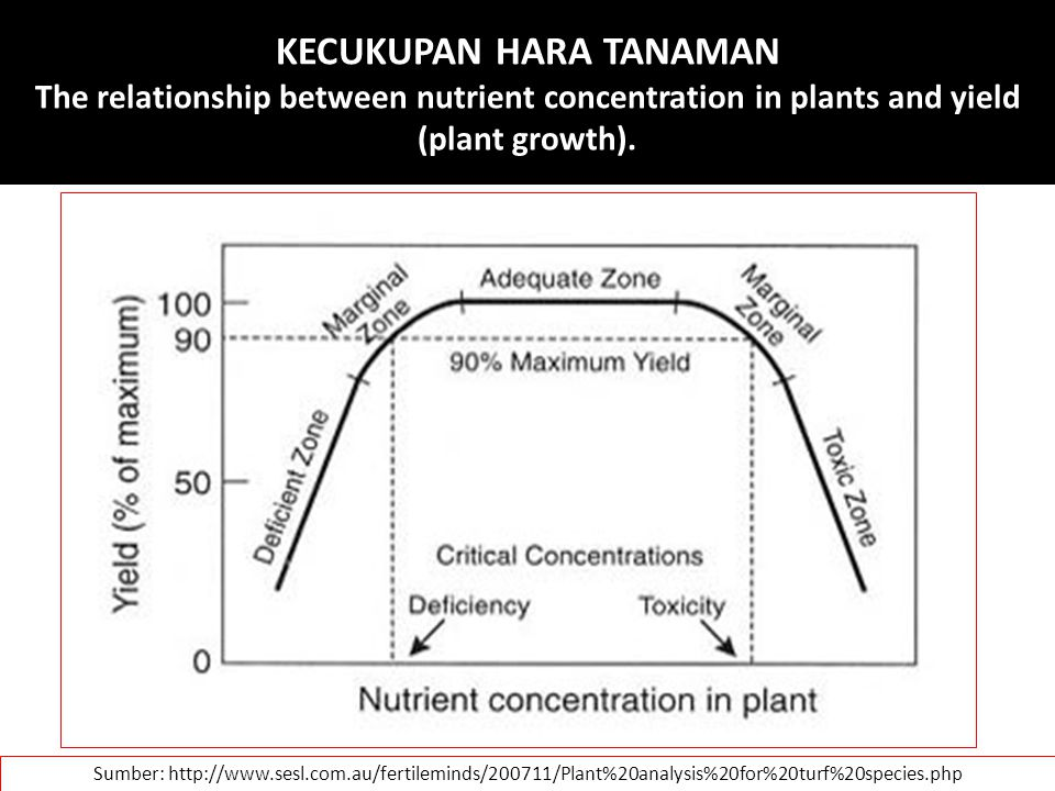 KECUKUPAN HARA TANAMAN The relationship between nutrient concentration in plants and yield (plant growth).