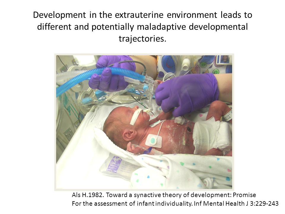 Development in the extrauterine environment leads to different and potentially maladaptive developmental trajectories. Als H.1982. Toward a synactive