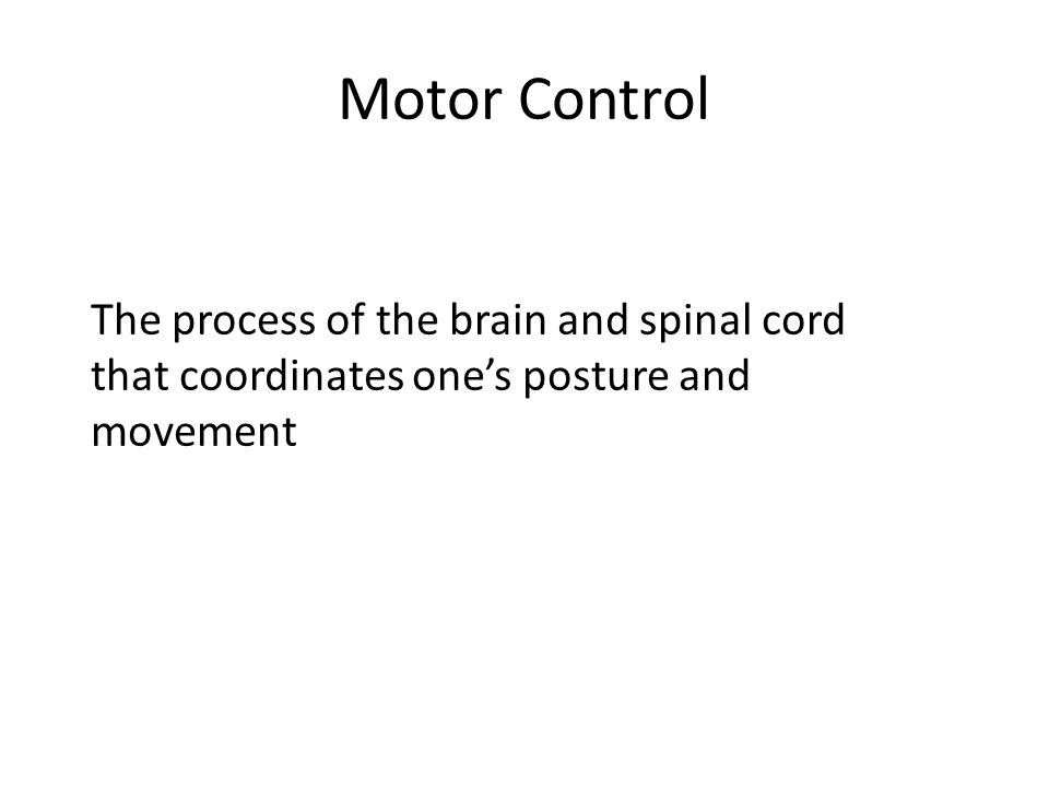 Motor Control The process of the brain and spinal cord that coordinates one's posture and movement