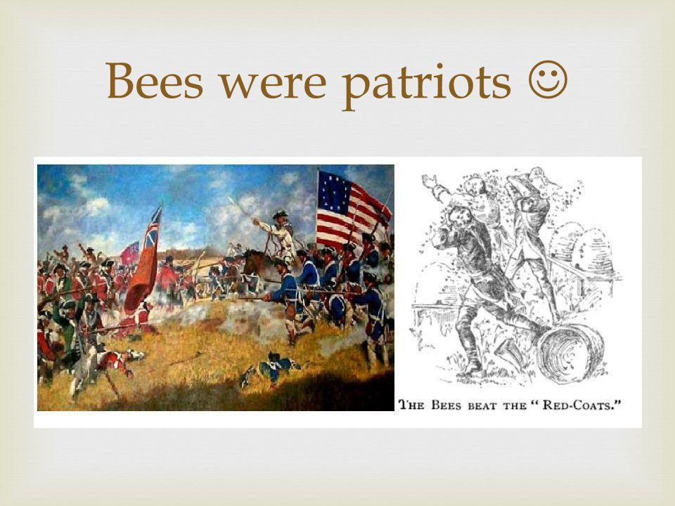 Bees were patriots