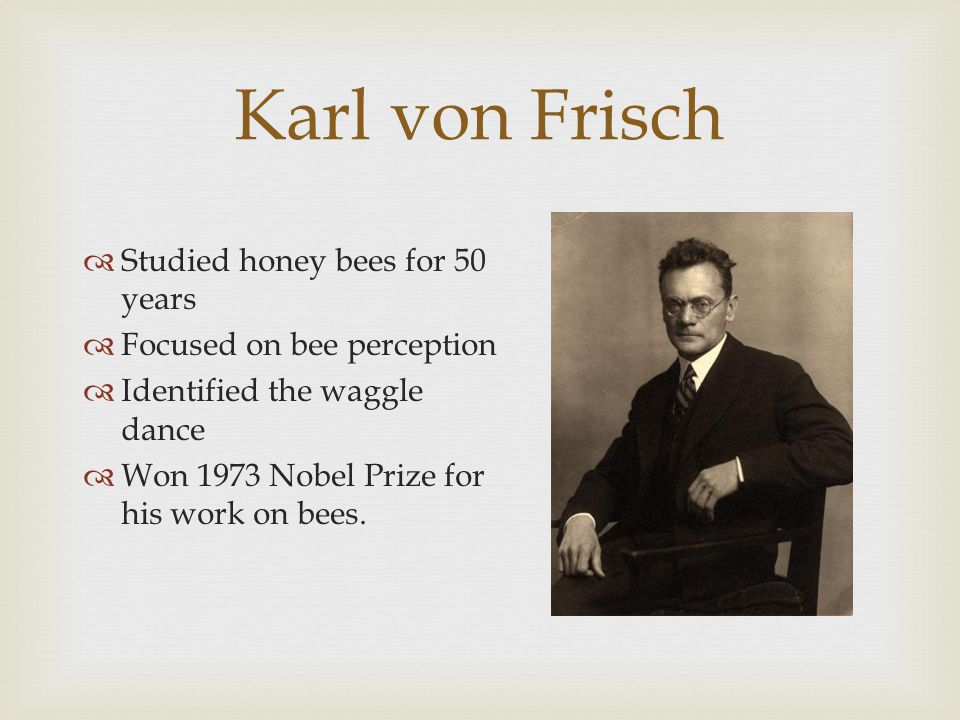 Karl von Frisch  Studied honey bees for 50 years  Focused on bee perception  Identified the waggle dance  Won 1973 Nobel Prize for his work on bees.