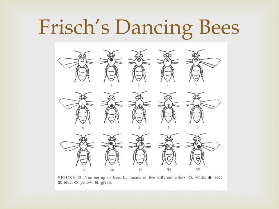 Frisch's Dancing Bees