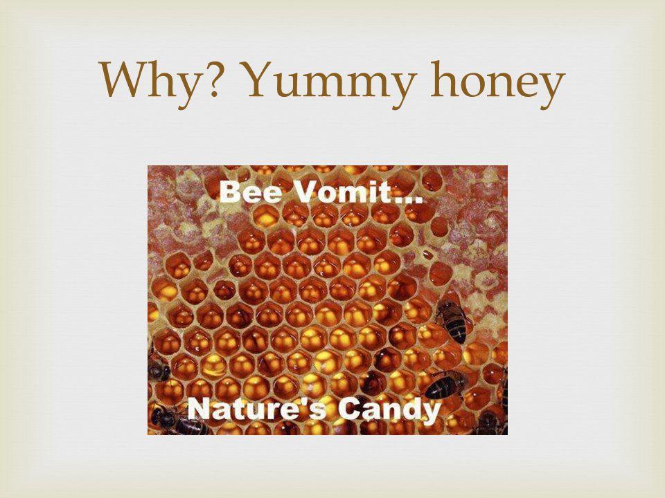 Why? Yummy honey