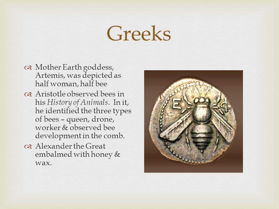  Copied Egyptian/Greek beekeeping methods.