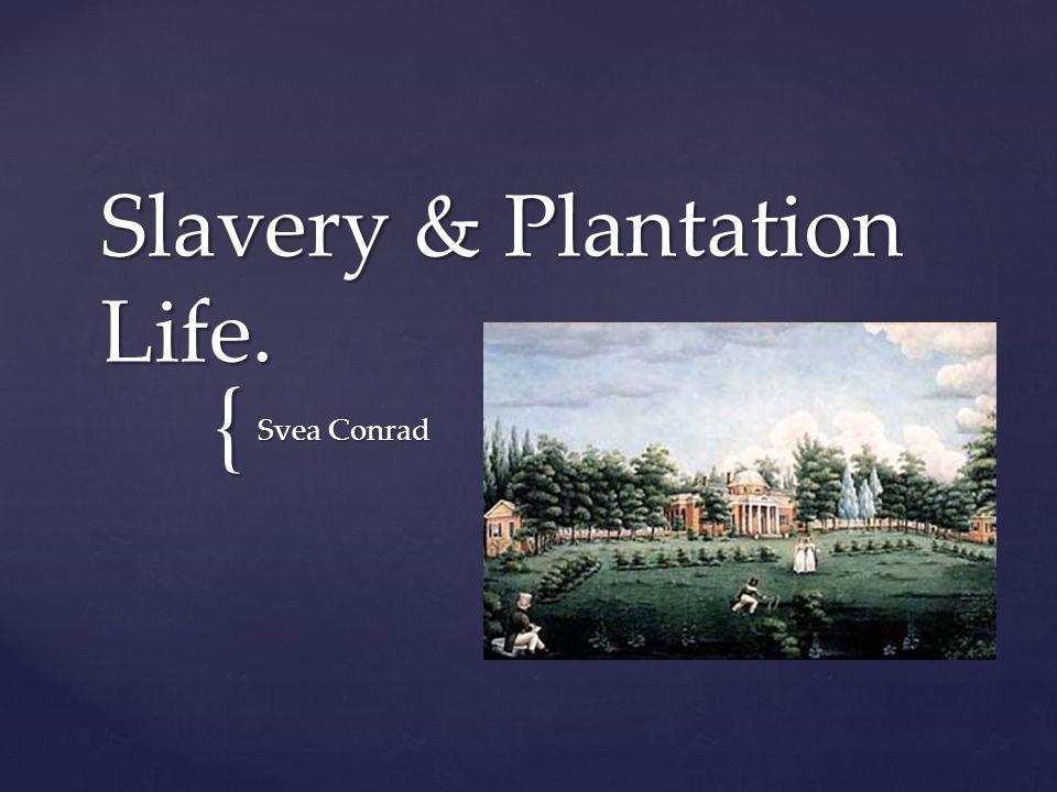 { Slavery & Plantation Life. Svea Conrad