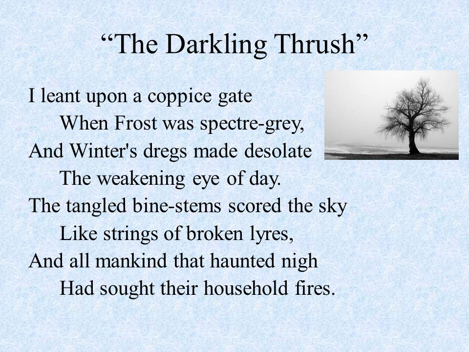 """The Darkling Thrush"" I leant upon a coppice gate When Frost was spectre-grey, And Winter's dregs made desolate The weakening eye of day. The tangled"