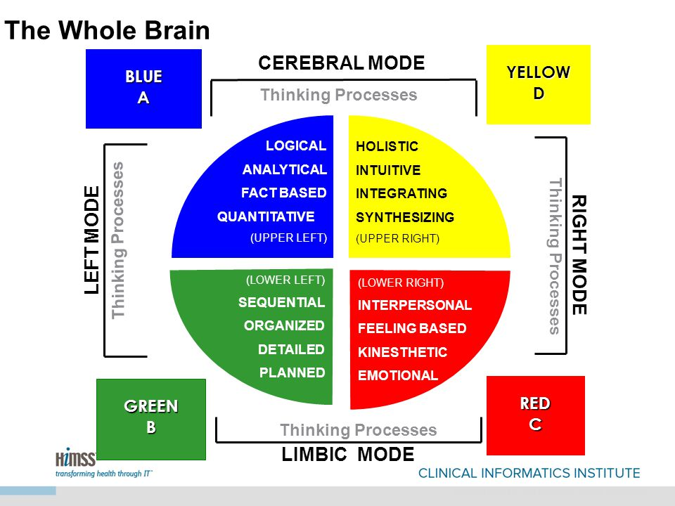 REDCREDC CEREBRAL MODE YELLOWDYELLOWD BLUEABLUEA LIMBIC MODE Thinking Processes GREENBGREENB LOGICAL ANALYTICAL FACT BASED QUANTITATIVE (UPPER LEFT) HOLISTIC INTUITIVE INTEGRATING SYNTHESIZING (UPPER RIGHT) (LOWER LEFT) SEQUENTIAL ORGANIZED DETAILED PLANNED (LOWER RIGHT) INTERPERSONAL FEELING BASED KINESTHETIC EMOTIONAL RIGHT MODE LEFT MODE Thinking Processes Adapted from the Ned Herrmann Whole Brain Model The Whole Brain