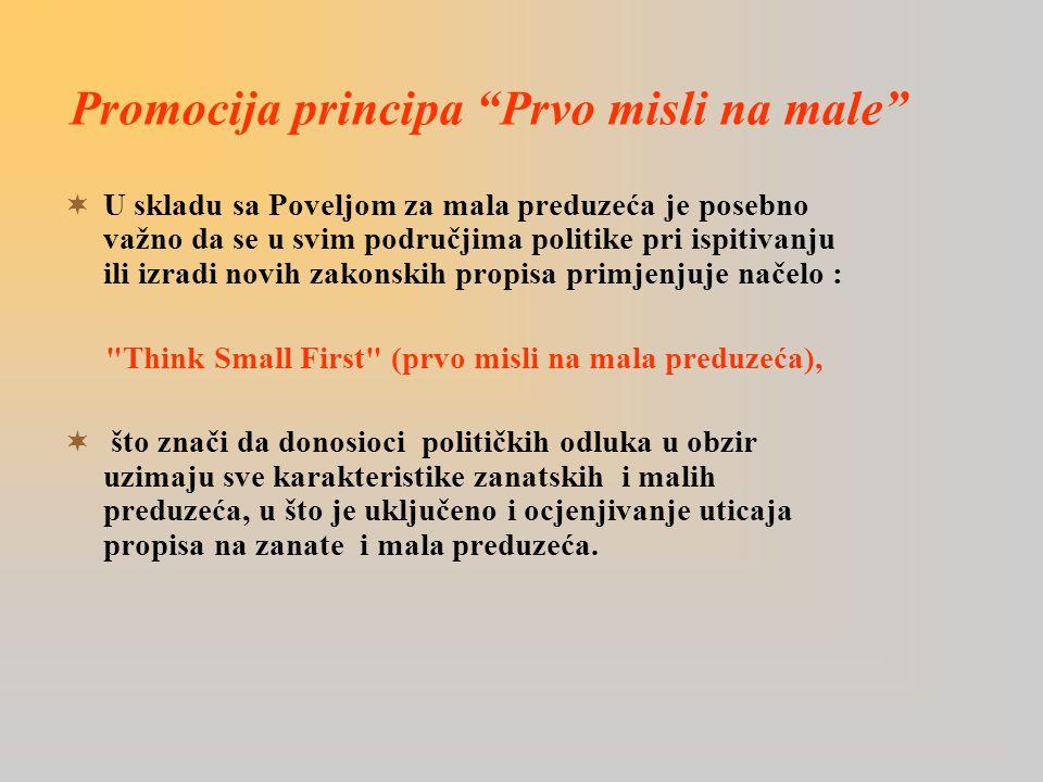 Promocija principa Prvo misli na male  U skladu sa Poveljom za mala preduzeća je posebno važno da se u svim područjima politike pri ispitivanju ili izradi novih zakonskih propisa primjenjuje načelo : Think Small First (prvo misli na mala preduzeća),  što znači da donosioci političkih odluka u obzir uzimaju sve karakteristike zanatskih i malih preduzeća, u što je uključeno i ocjenjivanje uticaja propisa na zanate i mala preduzeća.
