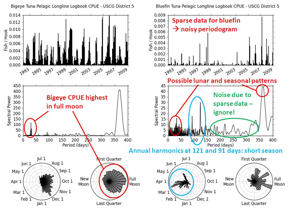 Bigeye CPUE highest in full moon Sparse data for bluefin  noisy periodogram Possible lunar and seasonal patterns Annual harmonics at 121 and 91 days: