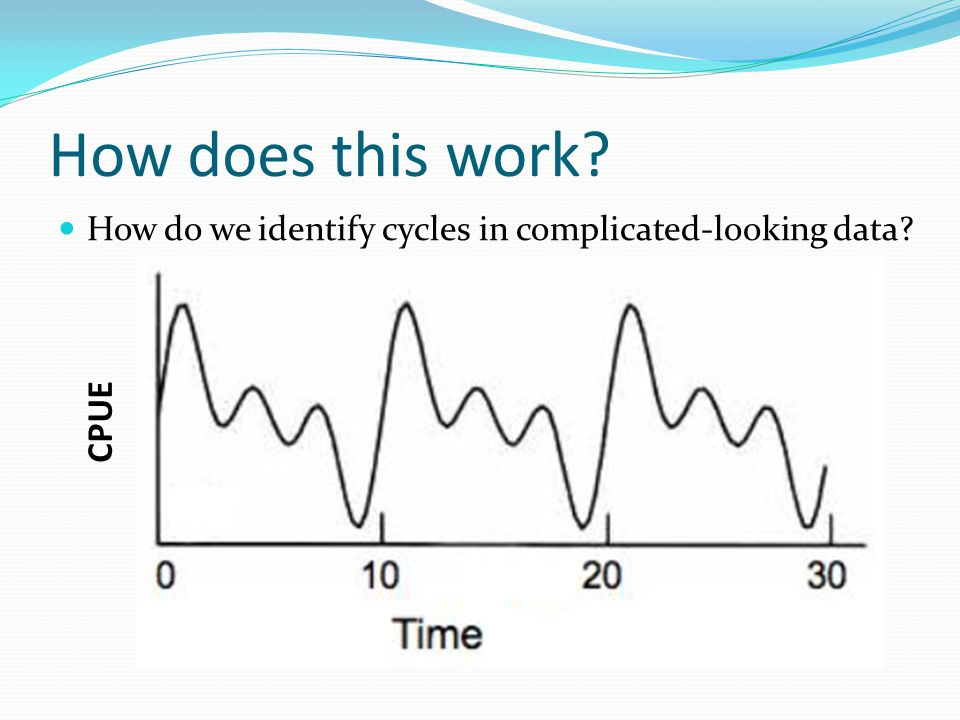 How does this work? How do we identify cycles in complicated-looking data? CPUE