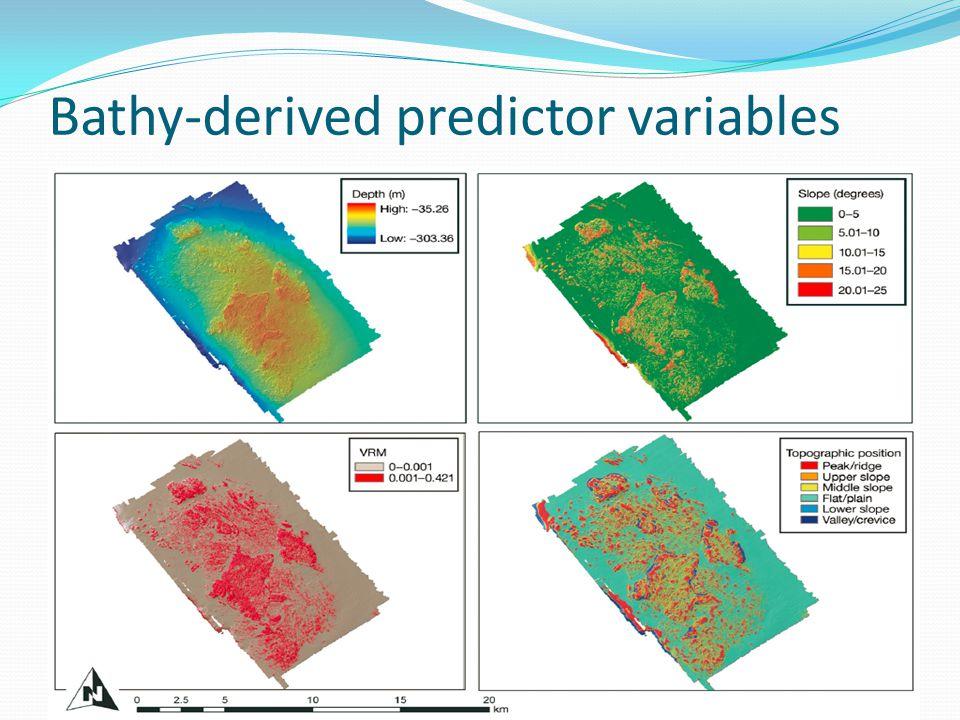 Bathy-derived predictor variables
