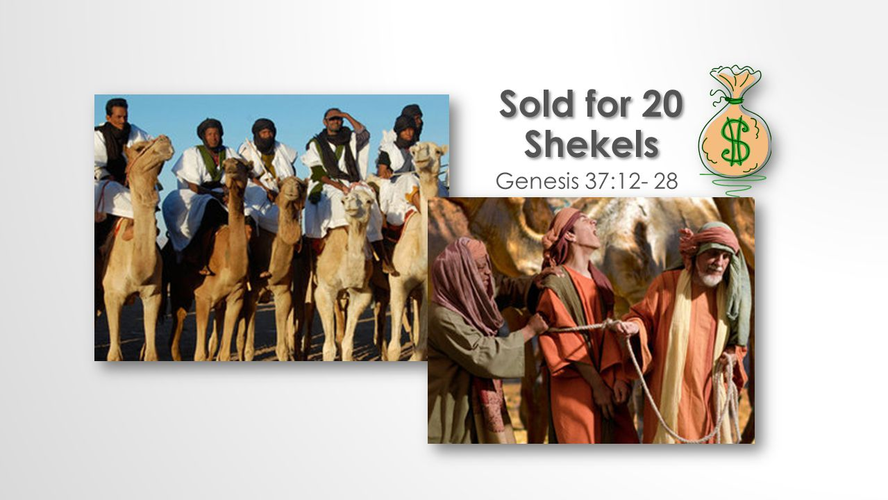 Genesis 37:12- 28 Sold for 20 Shekels