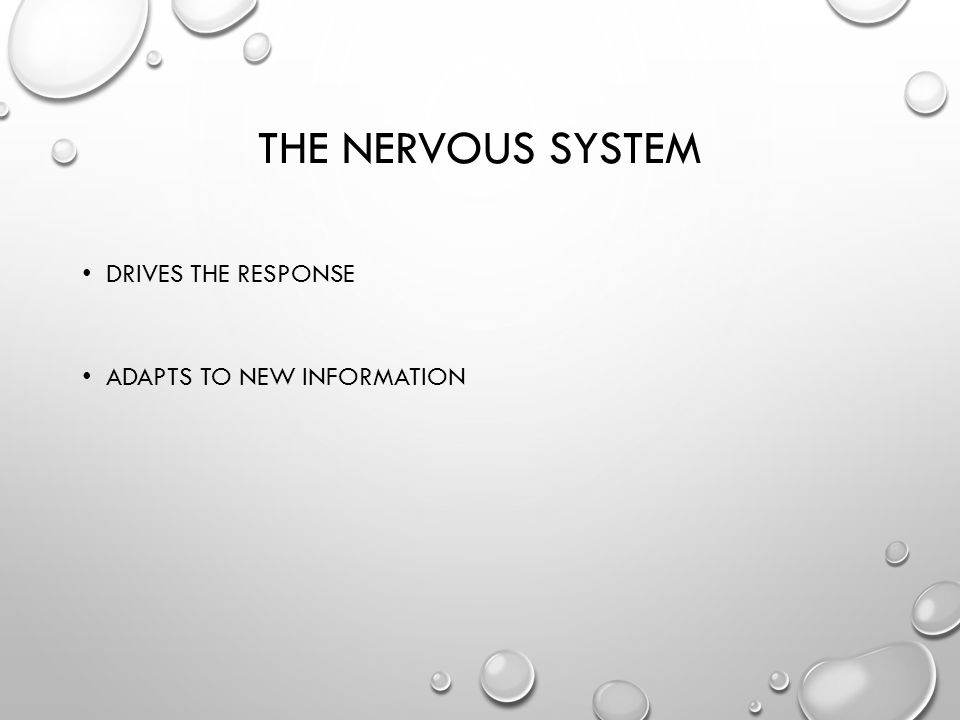 THE NERVOUS SYSTEM DRIVES THE RESPONSE ADAPTS TO NEW INFORMATION