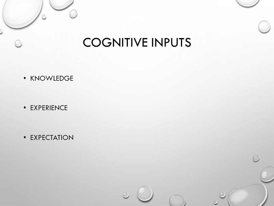 COGNITIVE INPUTS KNOWLEDGE EXPERIENCE EXPECTATION