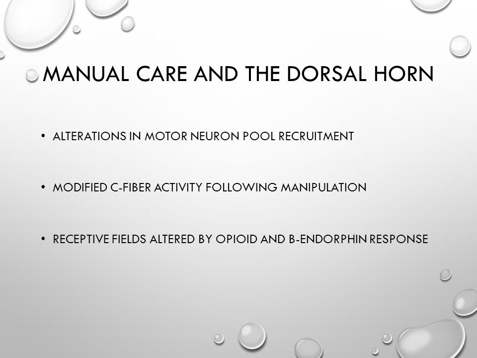 MANUAL CARE AND THE DORSAL HORN ALTERATIONS IN MOTOR NEURON POOL RECRUITMENT MODIFIED C-FIBER ACTIVITY FOLLOWING MANIPULATION RECEPTIVE FIELDS ALTERED BY OPIOID AND B-ENDORPHIN RESPONSE