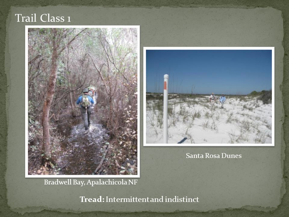 Trail Class 1 Tread: Intermittent and indistinct Bradwell Bay, Apalachicola NF Santa Rosa Dunes