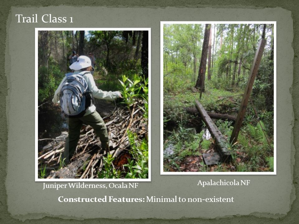 Trail Class 1 Constructed Features: Minimal to non-existent Juniper Wilderness, Ocala NF Apalachicola NF