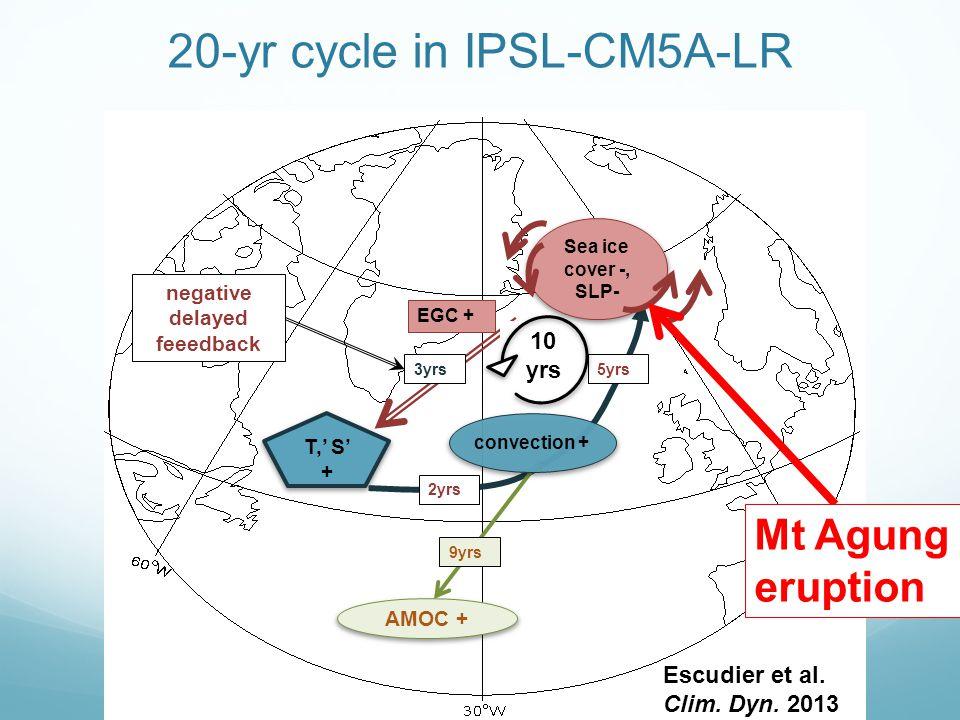 T,' S' + EGC + 5yrs 3yrs negative delayed feeedback AMOC + 9yrs 10 yrs 20-yr cycle in IPSL-CM5A-LR 2yrs convection + Sea ice cover -, SLP- Escudier et al.