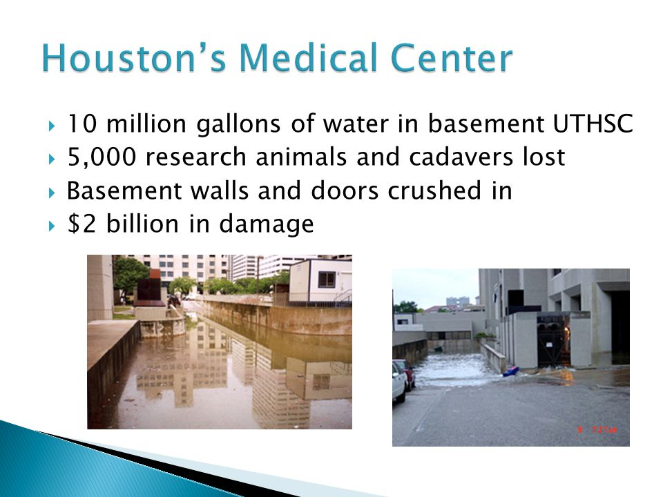  10 million gallons of water in basement UTHSC  5,000 research animals and cadavers lost  Basement walls and doors crushed in  $2 billion in damage