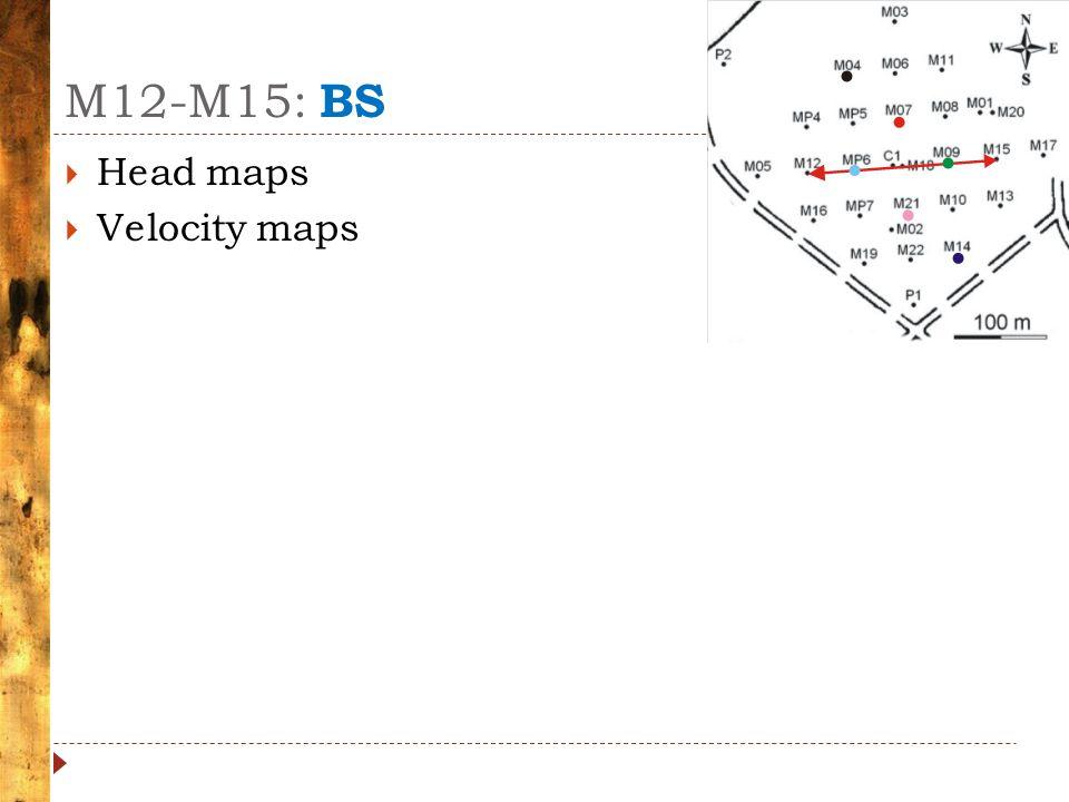 M12-M15: BS  Head maps  Velocity maps