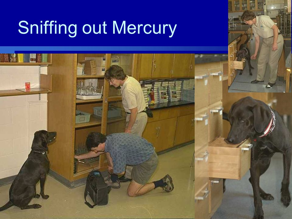 Sniffing out Mercury
