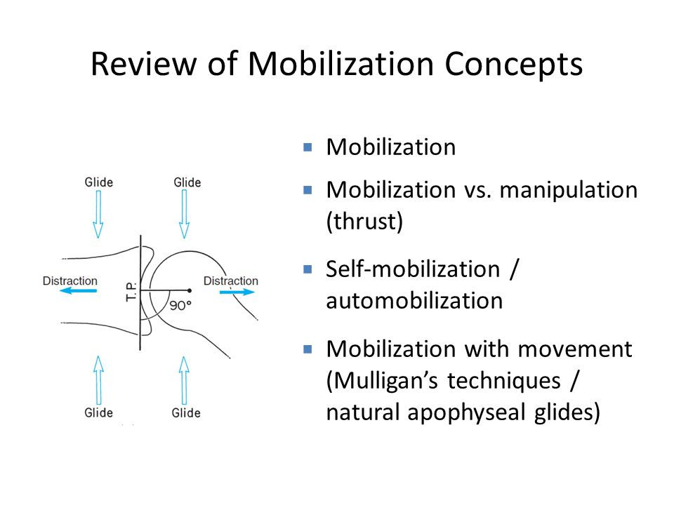 Review of Mobilization Concepts  Mobilization  Mobilization vs.
