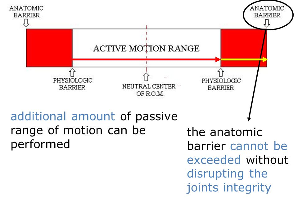 additional amount of passive range of motion can be performed the anatomic barrier cannot be exceeded without disrupting the joints integrity