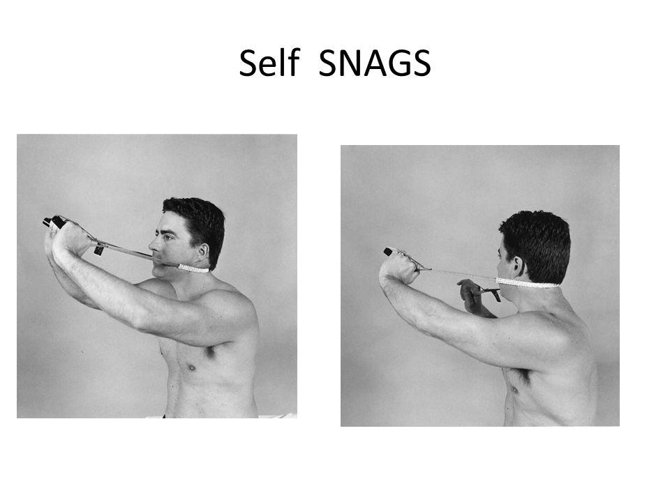Self SNAGS