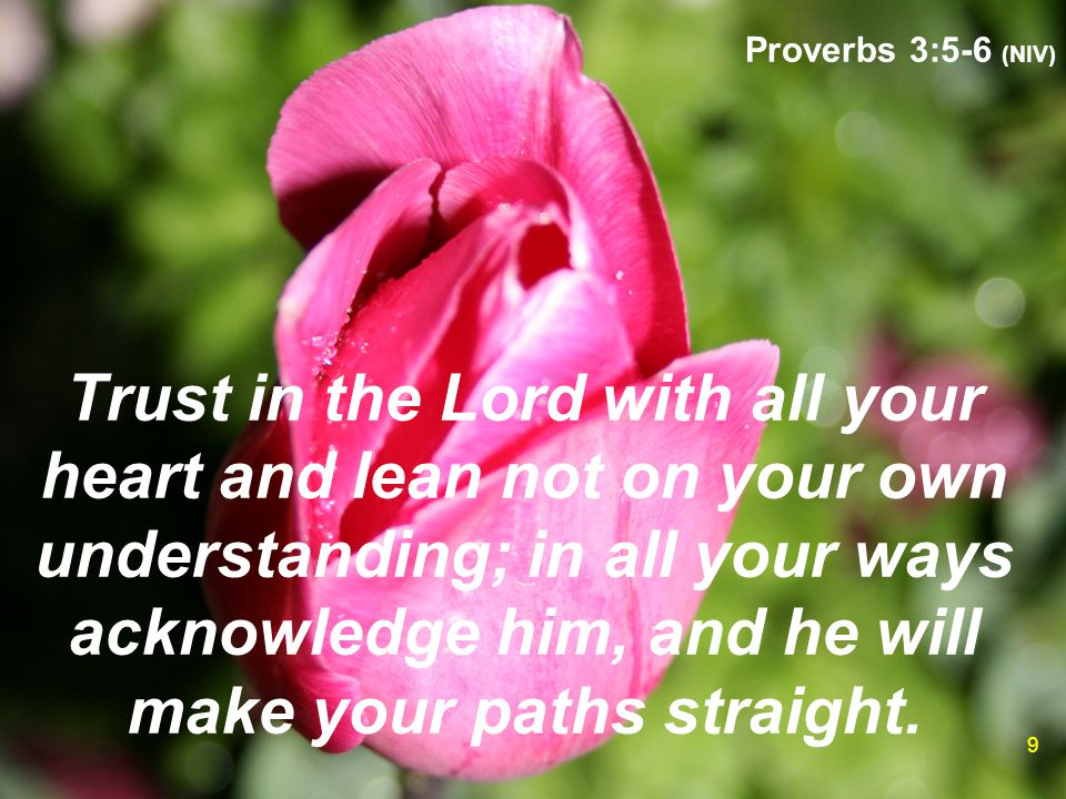 Proverbs 3:5-6 (NIV) 9 Trust in the Lord with all your heart and lean not on your own understanding; in all your ways acknowledge him, and he will mak