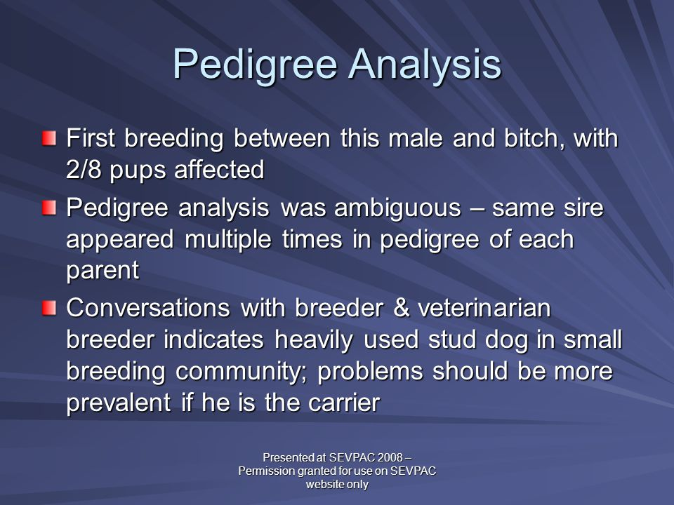 Pedigree Analysis First breeding between this male and bitch, with 2/8 pups affected Pedigree analysis was ambiguous – same sire appeared multiple tim