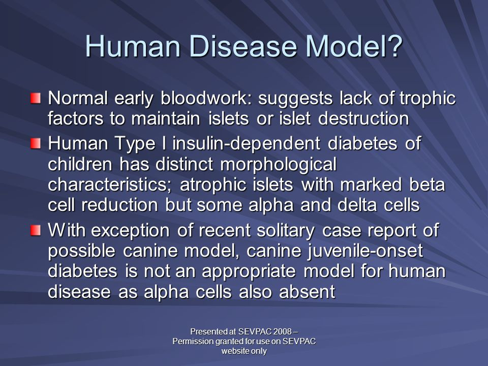 Human Disease Model? Normal early bloodwork: suggests lack of trophic factors to maintain islets or islet destruction Human Type I insulin-dependent d