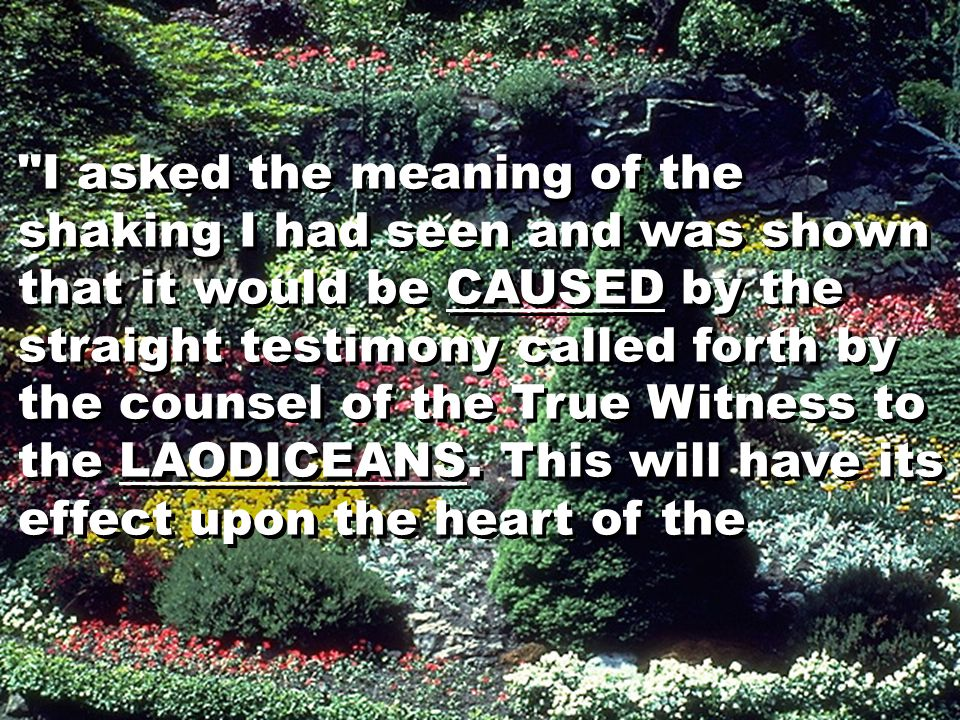 I asked the meaning of the shaking I had seen and was shown that it would be CAUSED by the straight testimony called forth by the counsel of the True Witness to the LAODICEANS.
