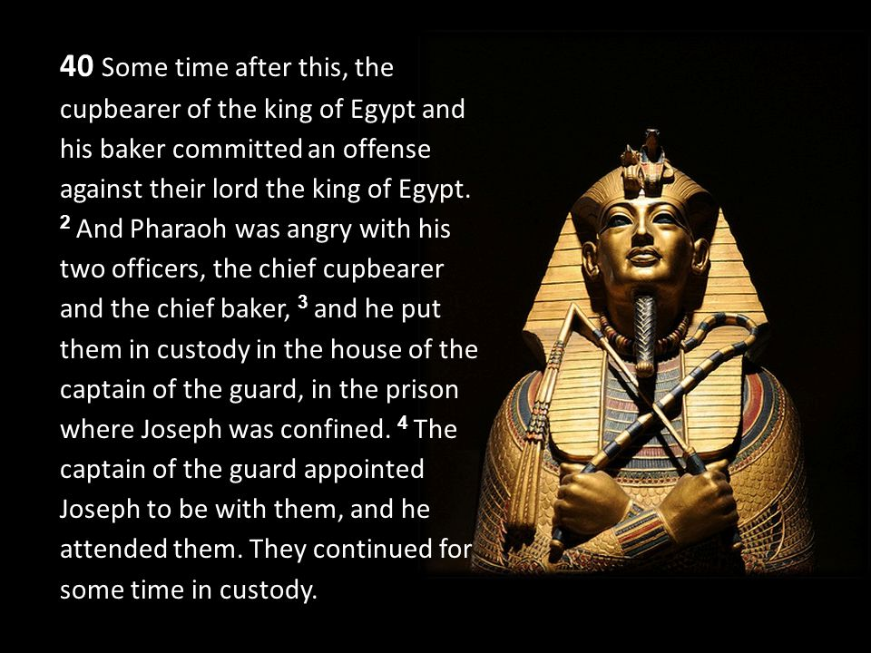 40 Some time after this, the cupbearer of the king of Egypt and his baker committed an offense against their lord the king of Egypt.