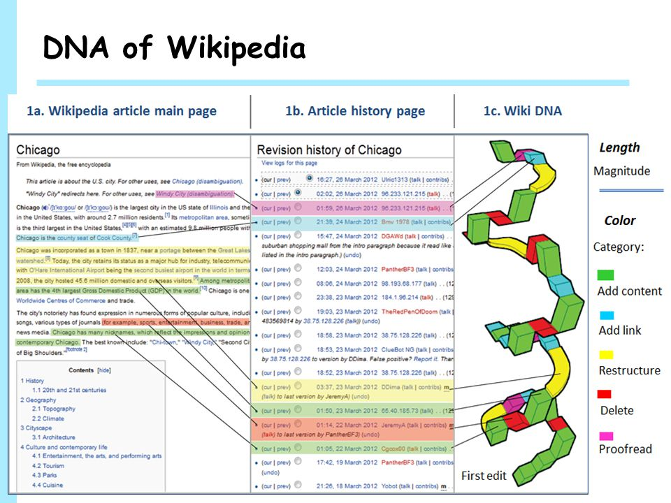 WINLAB DNA of Wikipedia 5