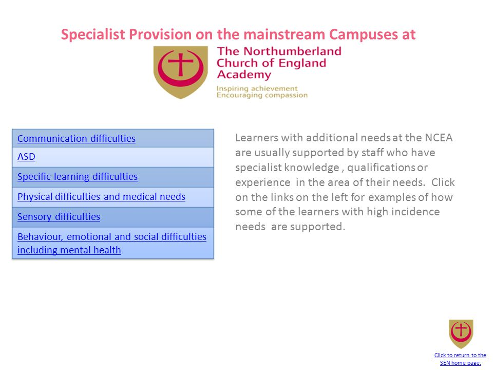 Specialist Provision on the mainstream Campuses at Learners with additional needs at the NCEA are usually supported by staff who have specialist knowl