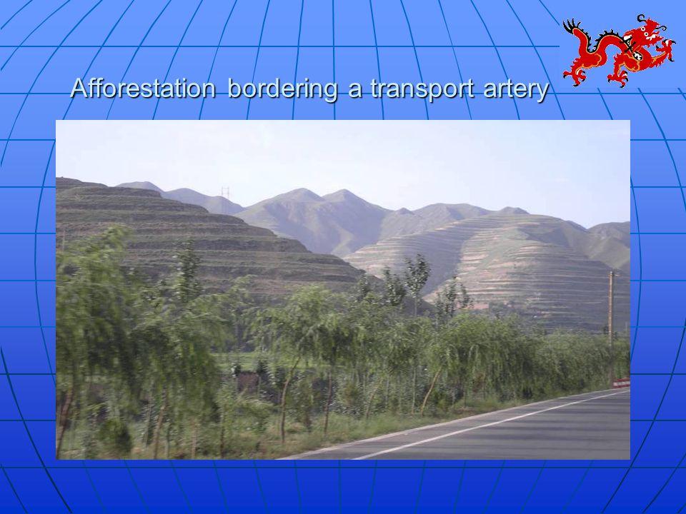 Afforestation bordering a transport artery