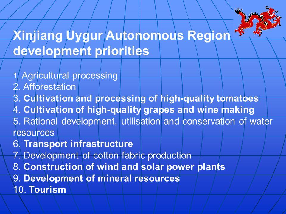 Xinjiang Uygur Autonomous Region development priorities 1.