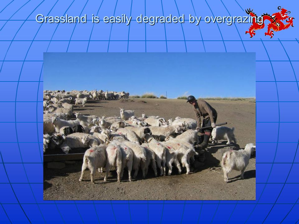Grassland is easily degraded by overgrazing