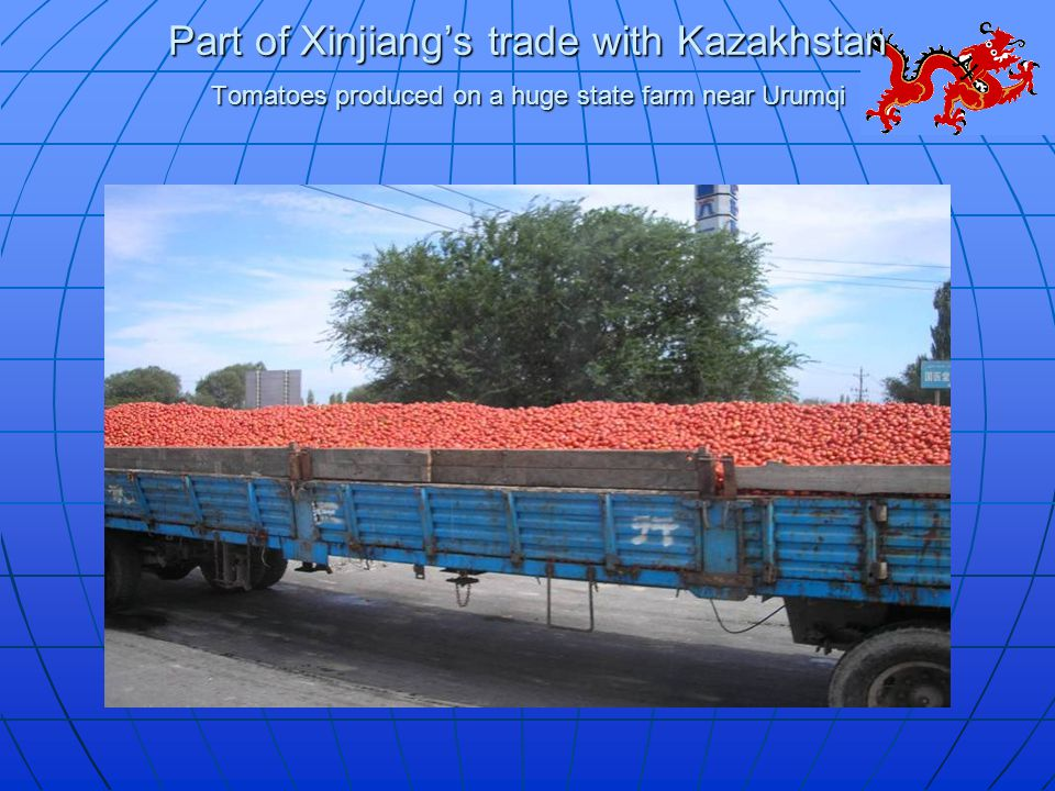 Part of Xinjiang's trade with Kazakhstan Tomatoes produced on a huge state farm near Urumqi