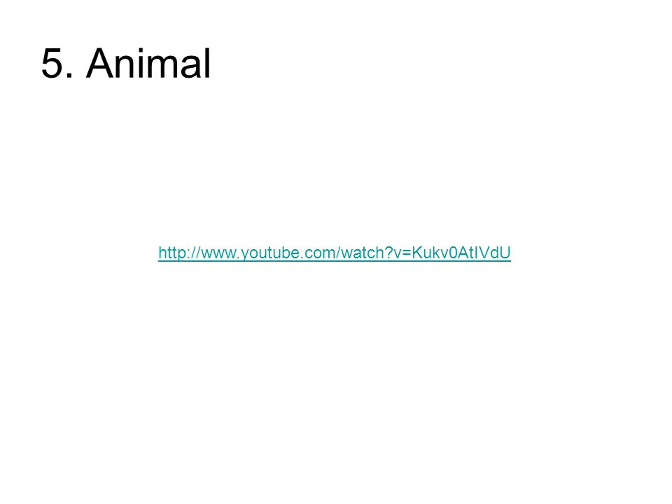 5. Animal http://www.youtube.com/watch v=Kukv0AtIVdU
